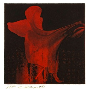 Toshiaki Shozu 2, Japan, Kusoku Zeishiki (A Moment And Eternity), Red, Photo Gravure, 2015
